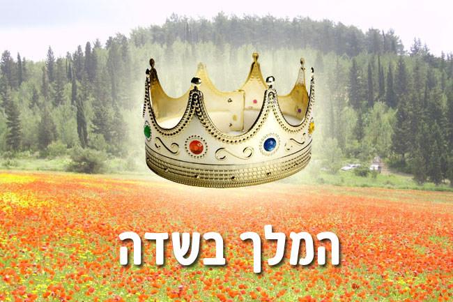 המלך בשדה - חודש אלול